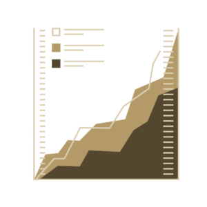 Virtual CFO Graph Icon